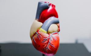 Read more about the article 5 conseils pour faire baisser son cholestérol et préserver sa santé cardiovasculaire